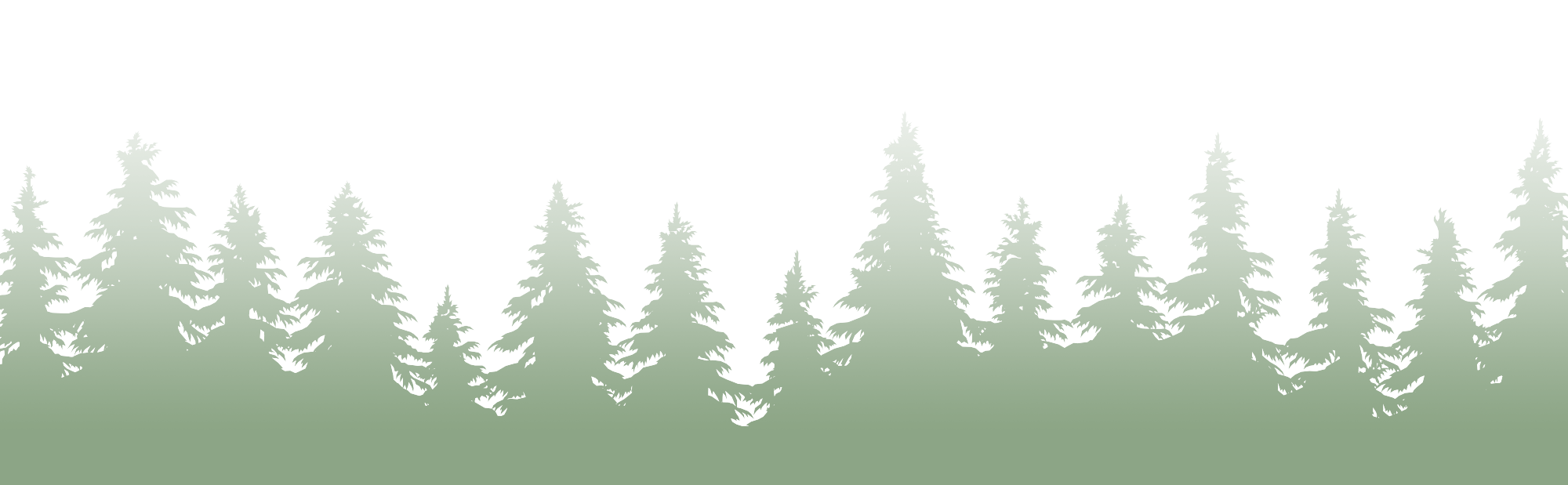 Silhouette of pine tree forest going from solid green at the bottom and fading to transparent at the top